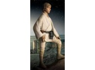 1/4 Scale Luke Skywalker